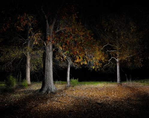 "Untitled #5 from Harold Ross' light painting photography series ""Night"""