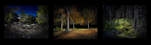 "Harold Ross light painting photography series ""Night"""