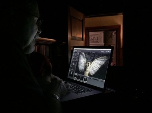 Photographer Harold Ross light painting in the Biltmore Estate