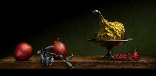 Still Life with Gourd by photographer Harold Ross