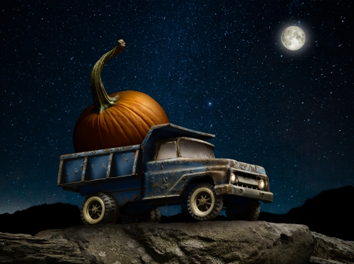 "Light Painting Photographer Harold Ross's Light Painted image ""Pumpkin Harvest"""
