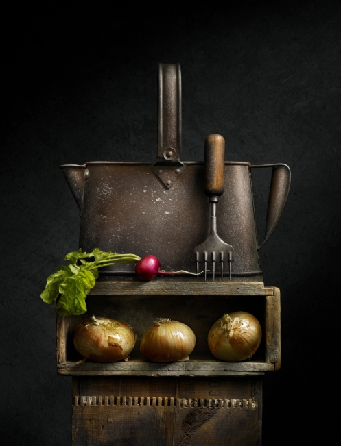 "Light Painted Photograph ""Still Life with Watering Can and Radish"" by Photographer Harold Ross"